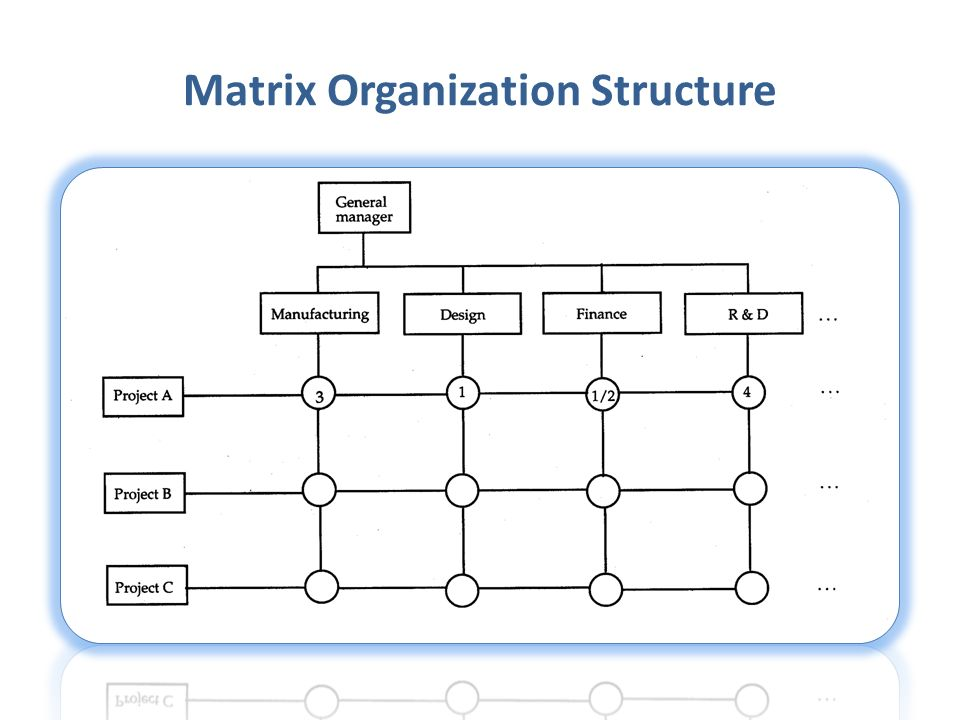 Matrix Organization Structure