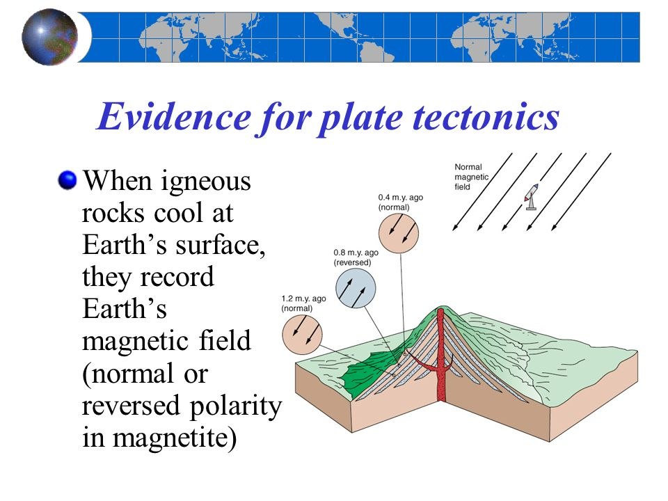 alfred wegener and the exploration of plate tectonics