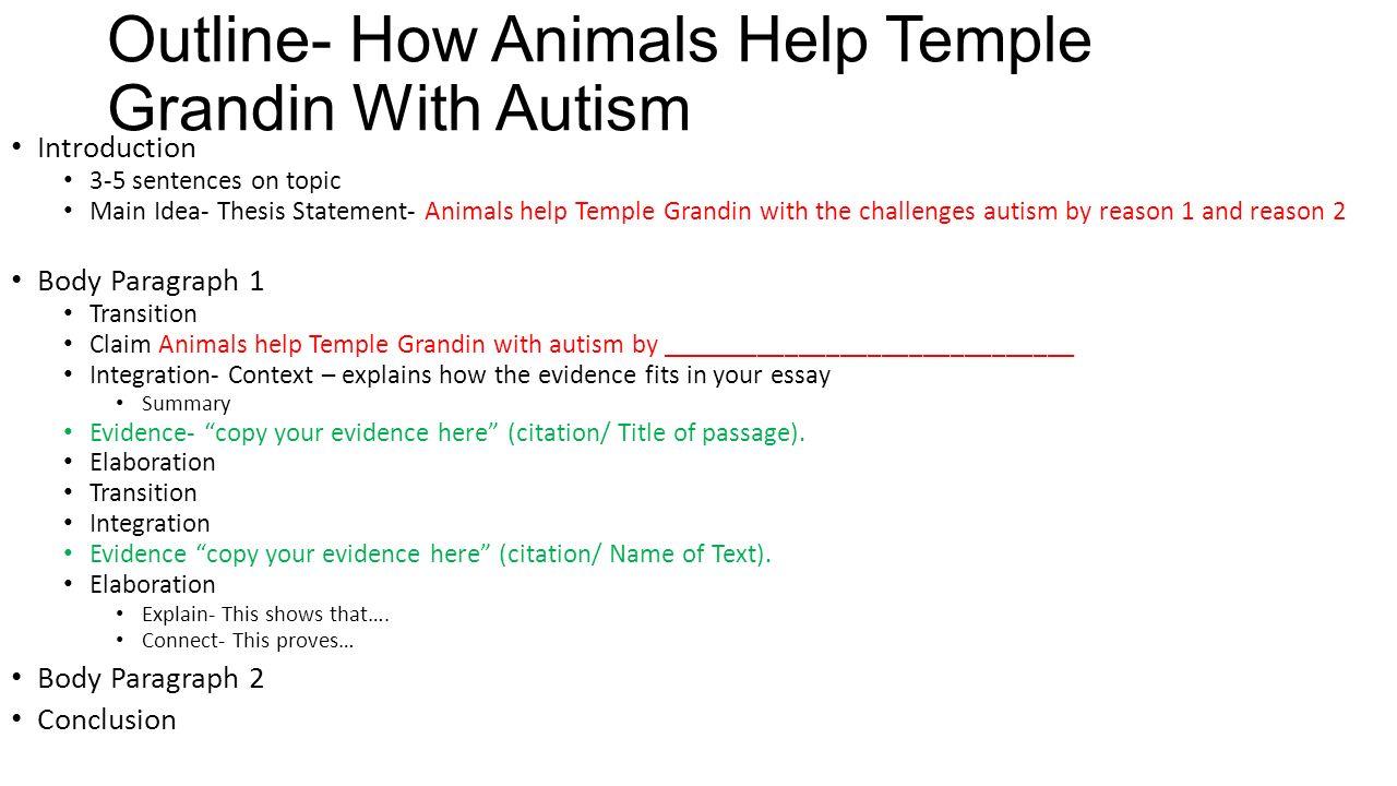autism summary essay