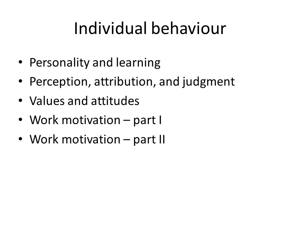 Individual behaviour Personality and learning Perception, attribution, and judgment Values and attitudes Work motivation – part I Work motivation – part II