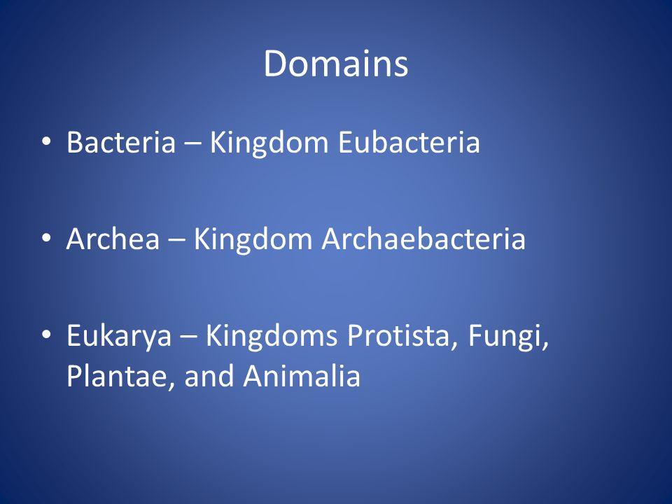 Domains Bacteria – Kingdom Eubacteria Archea – Kingdom Archaebacteria Eukarya – Kingdoms Protista, Fungi, Plantae, and Animalia
