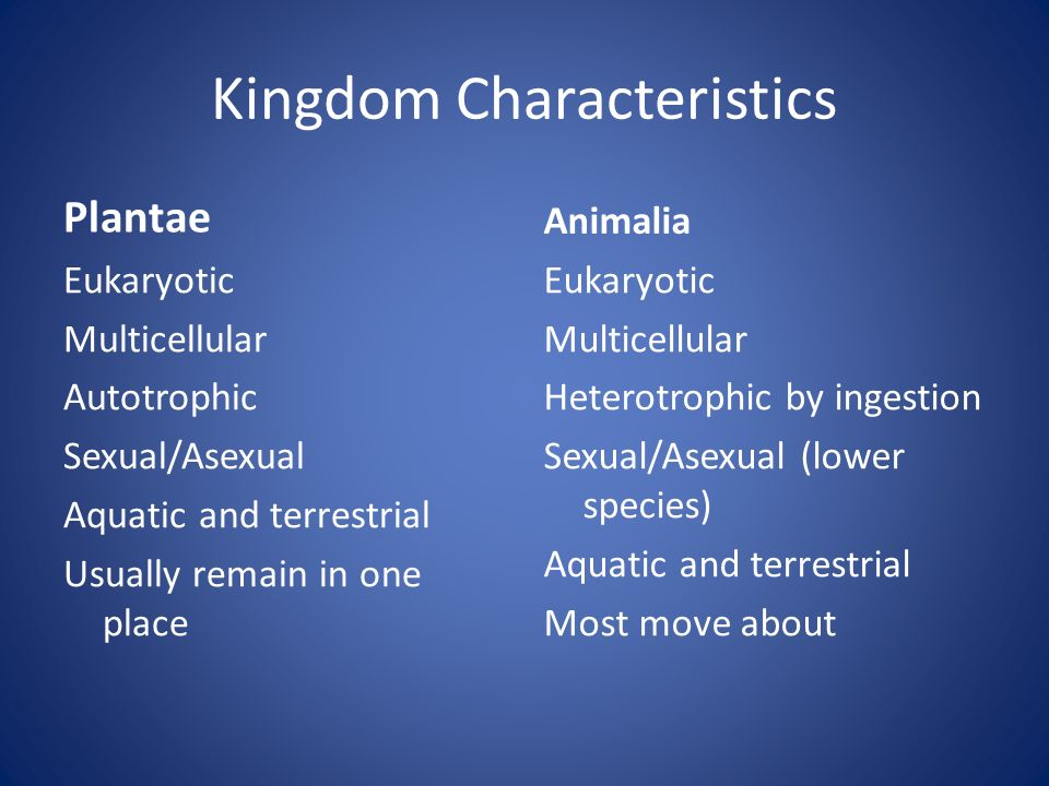 Kingdom Characteristics Plantae Eukaryotic Multicellular Autotrophic Sexual/Asexual Aquatic and terrestrial Usually remain in one place Animalia Eukaryotic Multicellular Heterotrophic by ingestion Sexual/Asexual (lower species) Aquatic and terrestrial Most move about