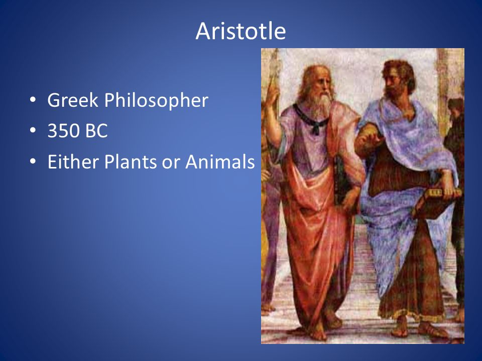 Aristotle Greek Philosopher 350 BC Either Plants or Animals