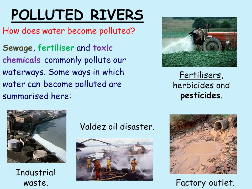 significance of study about water pollution Explains the different types of sources of water pollution.