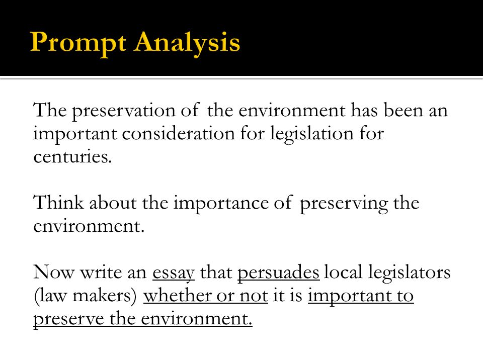 english ii the most important and first step to the writing  the preservation of the environment has been an important consideration for legislation for centuries