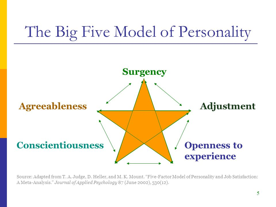 5 Adjustment Surgency Agreeableness Openness to experience Conscientiousness The Big Five Model of Personality Source: Adapted from T.