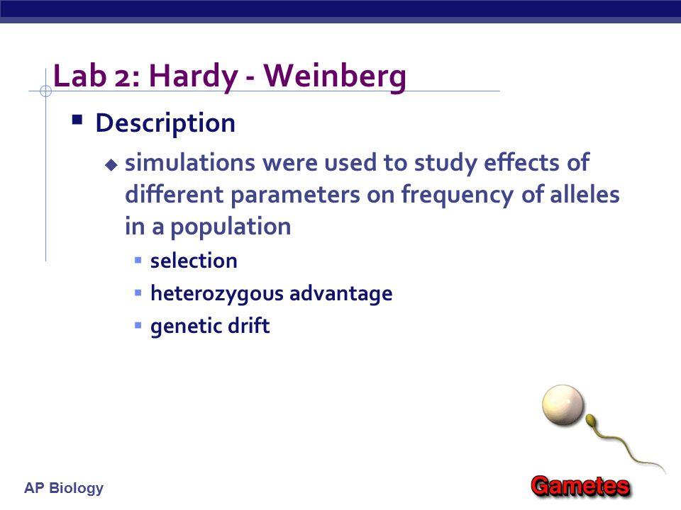 ap biology hardy weinberg essay
