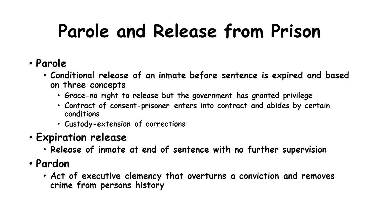 prisonization definition