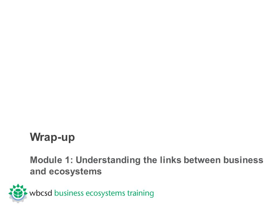 Wrap-up Module 1: Understanding the links between business and ecosystems