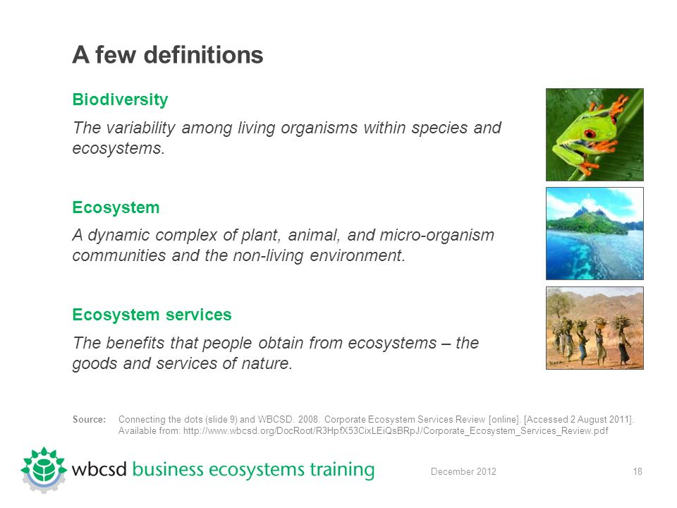 18 December 2012 A few definitions Biodiversity The variability among living organisms within species and ecosystems.