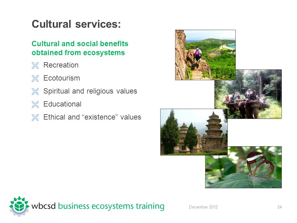 24 December 2012 Cultural services: Cultural and social benefits obtained from ecosystems  Recreation  Ecotourism  Spiritual and religious values  Educational  Ethical and existence values