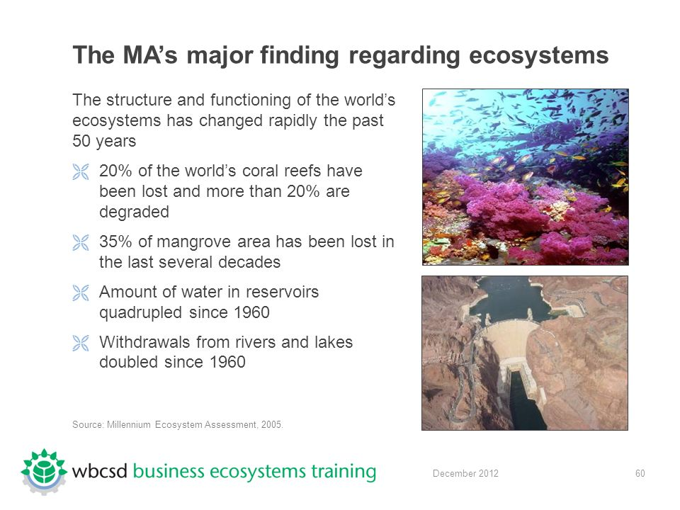 60 December 2012 The MA's major finding regarding ecosystems The structure and functioning of the world's ecosystems has changed rapidly the past 50 years  20% of the world's coral reefs have been lost and more than 20% are degraded  35% of mangrove area has been lost in the last several decades  Amount of water in reservoirs quadrupled since 1960  Withdrawals from rivers and lakes doubled since 1960 Source: Millennium Ecosystem Assessment, 2005.