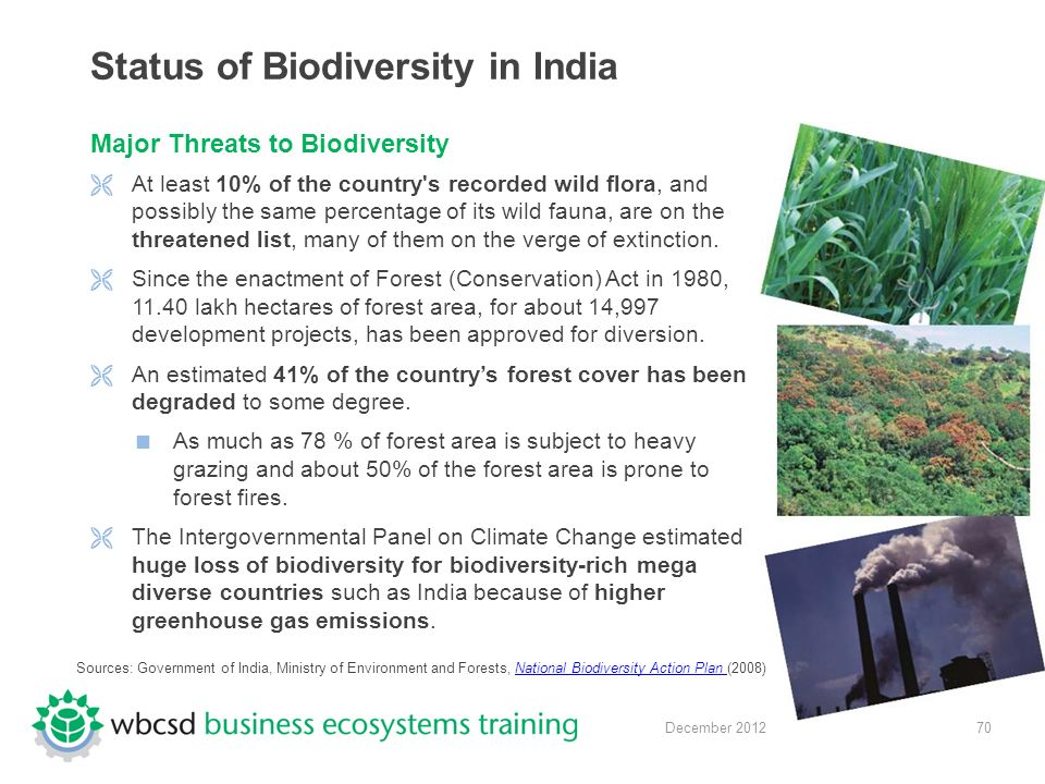 70 December 2012 Status of Biodiversity in India Major Threats to Biodiversity  At least 10% of the country s recorded wild flora, and possibly the same percentage of its wild fauna, are on the threatened list, many of them on the verge of extinction.