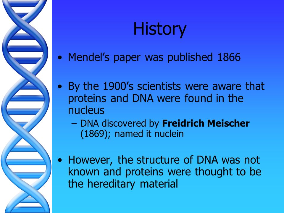 Dna the blueprint of life history structure replication ppt 2 dna the blueprint of life history structure replication malvernweather Images