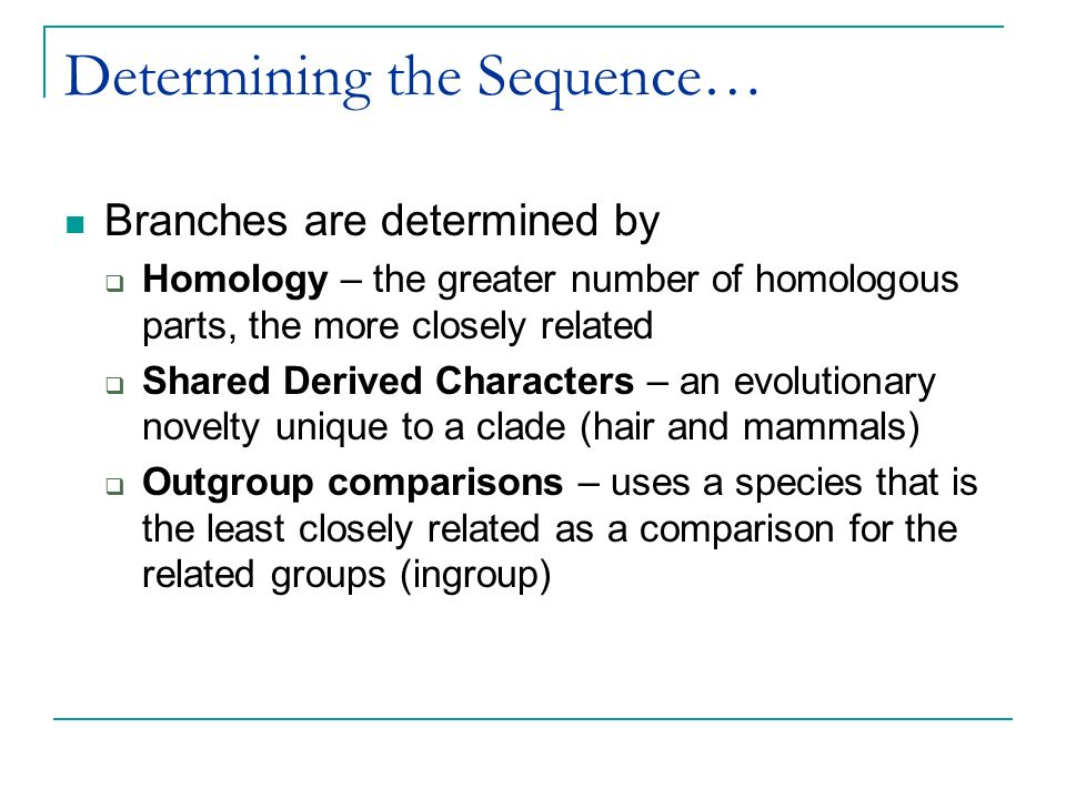 Determining the Sequence… Branches are determined by  Homology – the greater number of homologous parts, the more closely related  Shared Derived Characters – an evolutionary novelty unique to a clade (hair and mammals)  Outgroup comparisons – uses a species that is the least closely related as a comparison for the related groups (ingroup)