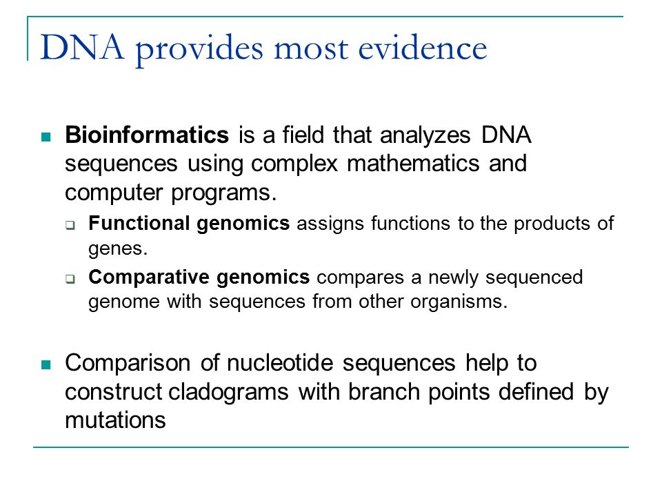 DNA provides most evidence Bioinformatics is a field that analyzes DNA sequences using complex mathematics and computer programs.