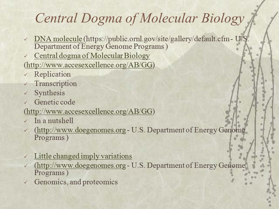 Central Dogma of Molecular Biology DNA molecule (https://public.ornl.gov/site/gallery/default.cfm - U.S.