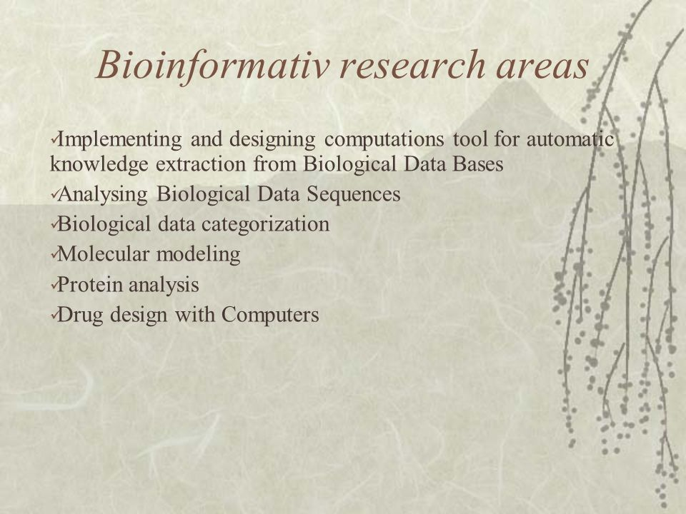 Bioinformativ research areas Implementing and designing computations tool for automatic knowledge extraction from Biological Data Bases Analysing Biological Data Sequences Biological data categorization Molecular modeling Protein analysis Drug design with Computers