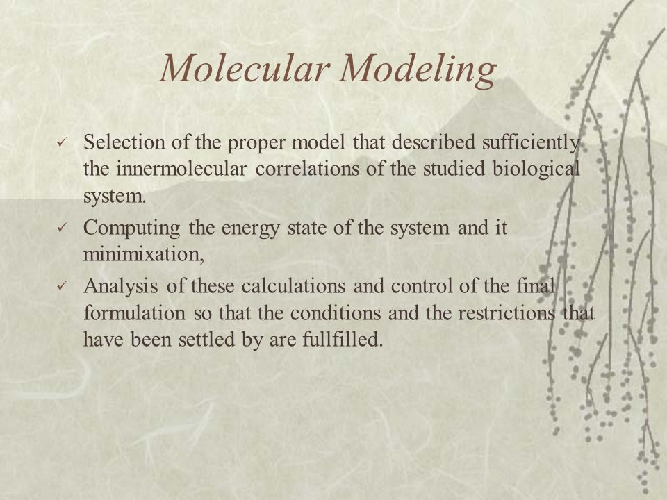 Molecular Modeling Selection of the proper model that described sufficiently the innermolecular correlations of the studied biological system.