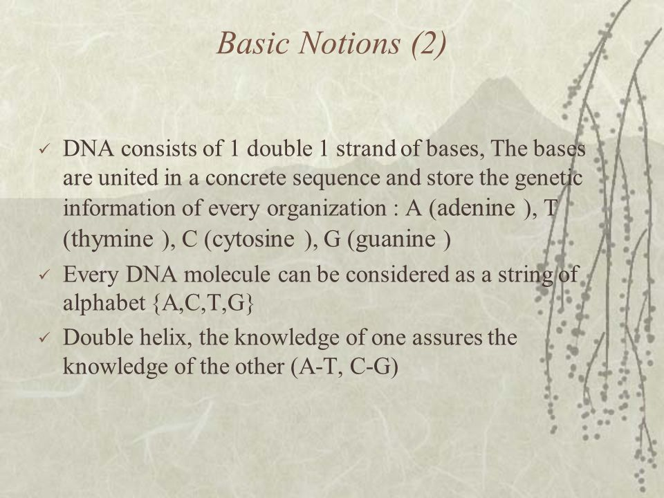Basic Notions (2) DNA consists of 1 double 1 strand of bases, The bases are united in a concrete sequence and store the genetic information of every organization : Α ( adenine ), Τ ( thymine ), C ( cytosine ), G ( guanine ) Every DNA molecule can be considered as a string of alphabet {A,C,T,G} Double helix, the knowledge of one assures the knowledge of the other (Α-Τ, C-G)