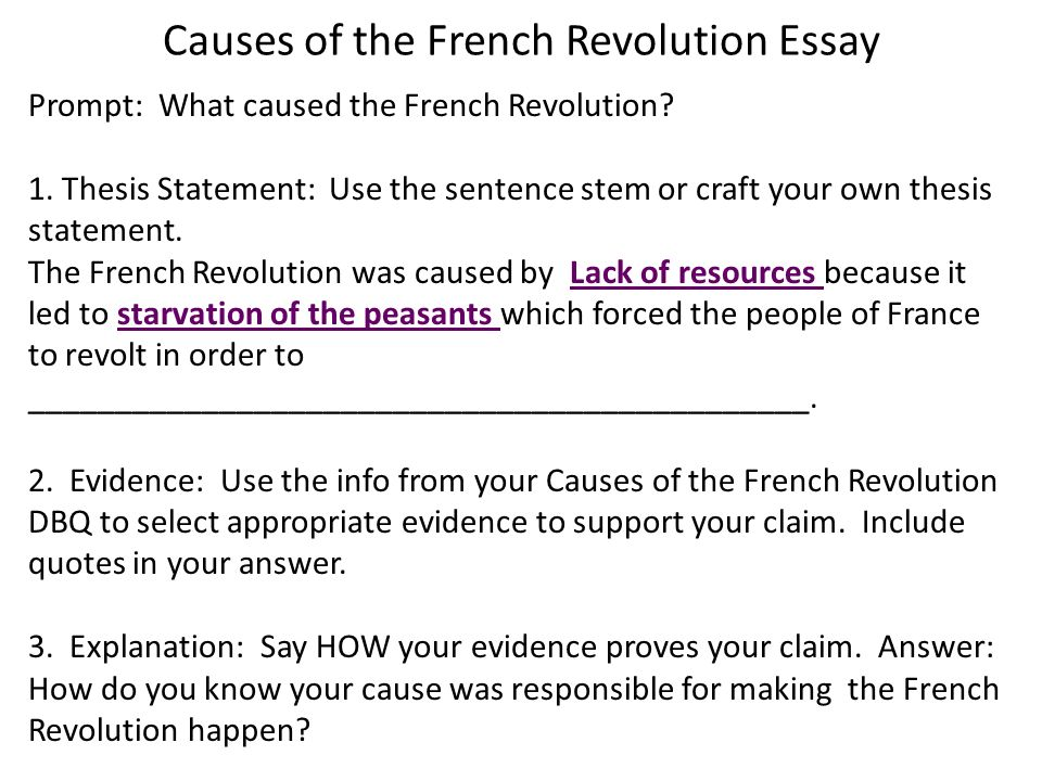 french a level essay help