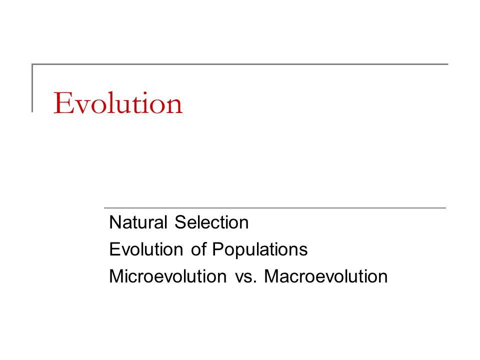 Evolution Natural Selection Evolution of Populations Microevolution vs. Macroevolution