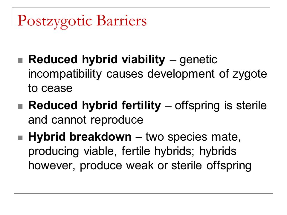 Postzygotic Barriers Reduced hybrid viability – genetic incompatibility causes development of zygote to cease Reduced hybrid fertility – offspring is sterile and cannot reproduce Hybrid breakdown – two species mate, producing viable, fertile hybrids; hybrids however, produce weak or sterile offspring