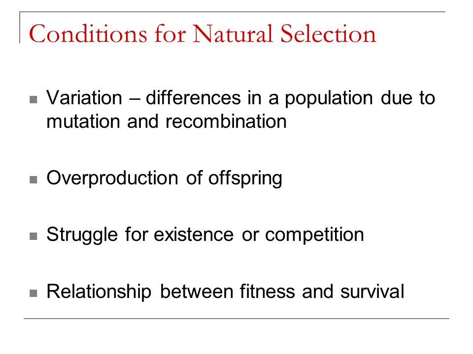 Conditions for Natural Selection Variation – differences in a population due to mutation and recombination Overproduction of offspring Struggle for existence or competition Relationship between fitness and survival