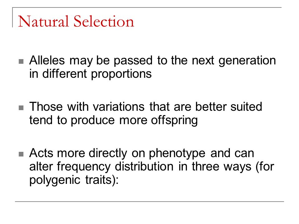 Natural Selection Alleles may be passed to the next generation in different proportions Those with variations that are better suited tend to produce more offspring Acts more directly on phenotype and can alter frequency distribution in three ways (for polygenic traits):