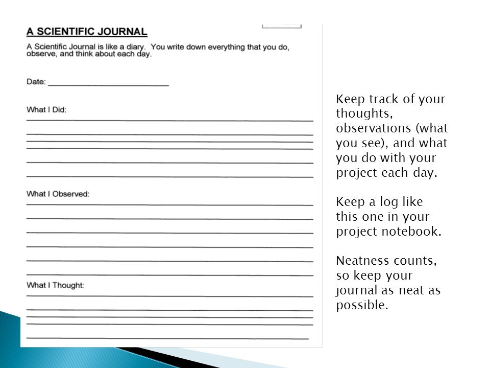 Keep track of your thoughts, observations (what you see), and what you do with your project each day.