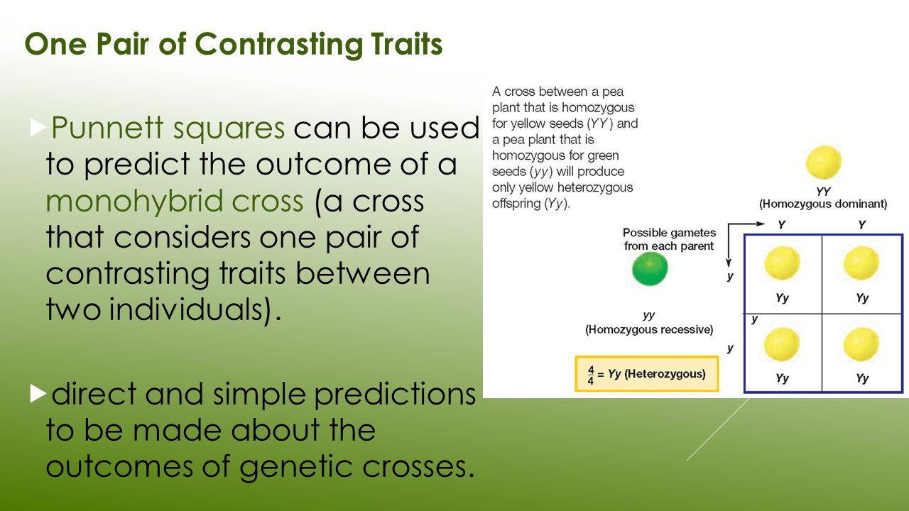 genetics cross
