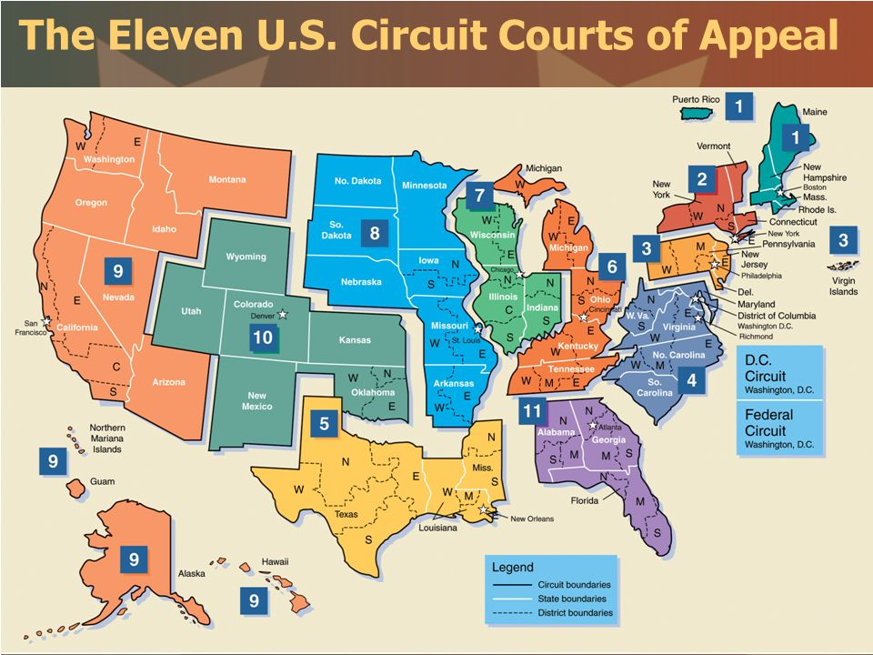10 The Eleven U S Circuit Courts Of Appeal