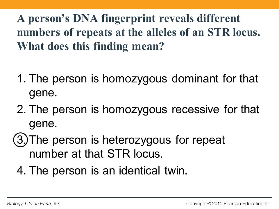 Copyright © 2011 Pearson Education Inc.Biology: Life on Earth, 9e A person's DNA fingerprint reveals different numbers of repeats at the alleles of an STR locus.