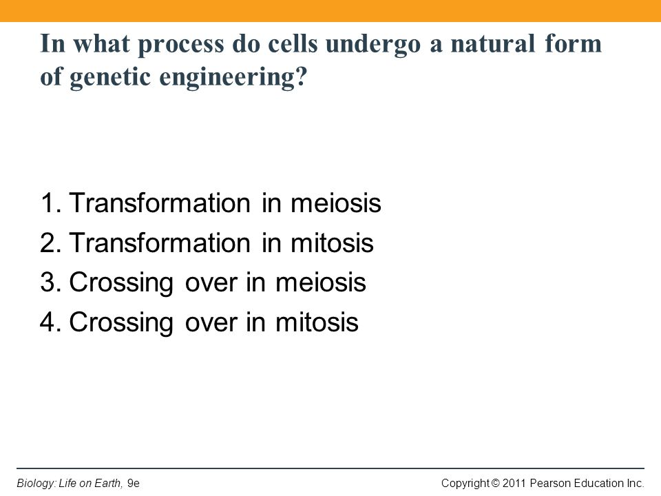 Copyright © 2011 Pearson Education Inc.Biology: Life on Earth, 9e In what process do cells undergo a natural form of genetic engineering.