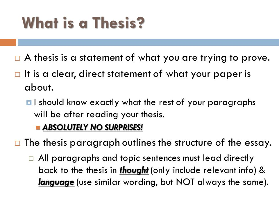 paragraph essays paragraph introductory thesis paragraph  4 what