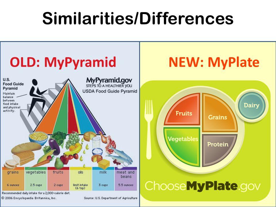 Printable Worksheets myplate worksheets : Myplate Gov Worksheet - Checks Worksheet