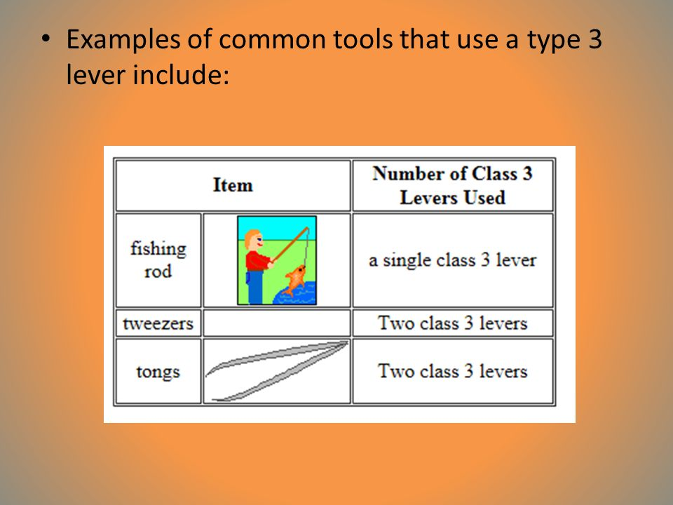 Examples of common tools that use a type 3 lever include:
