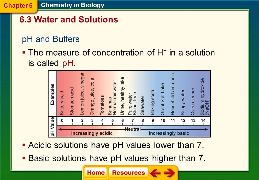 Q What is pH a measure of? As the concentration of H+ increases, what happens to the pH value?