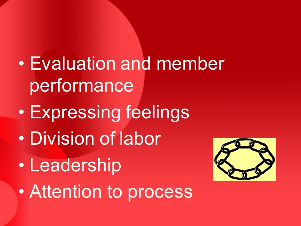 Evaluation and member performance Expressing feelings Division of labor Leadership Attention to process