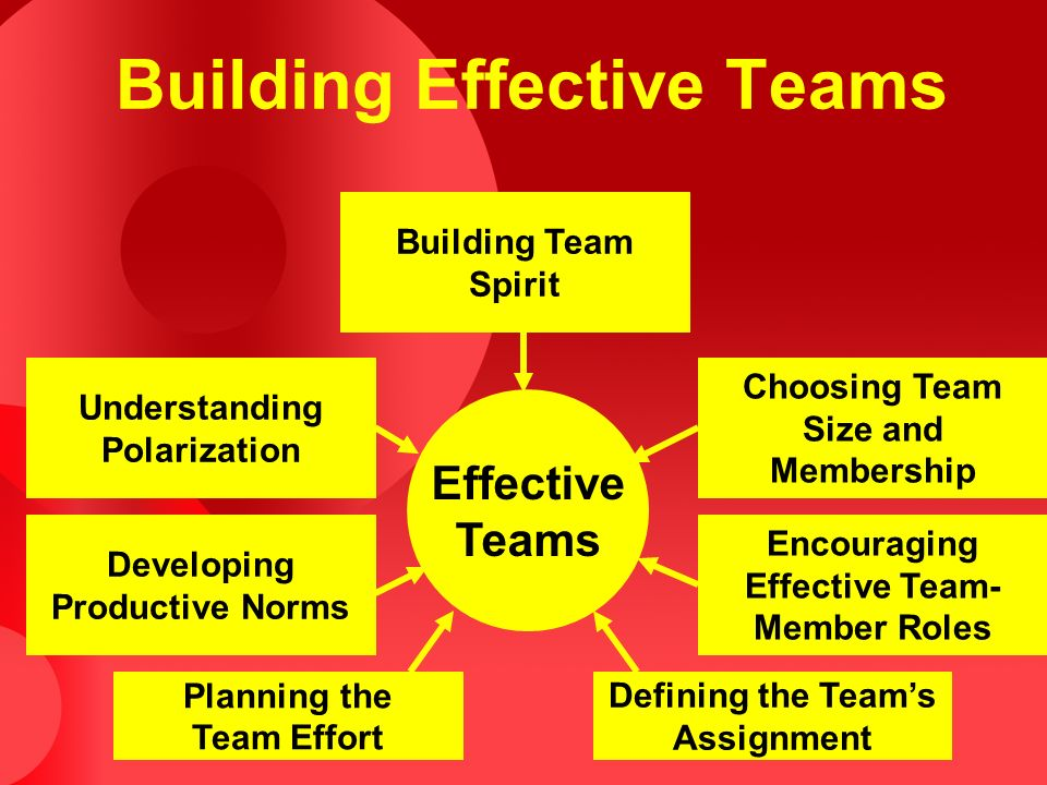 Building Effective Teams Effective Teams Building Team Spirit Choosing Team Size and Membership Encouraging Effective Team- Member Roles Defining the Team's Assignment Planning the Team Effort Developing Productive Norms Understanding Polarization