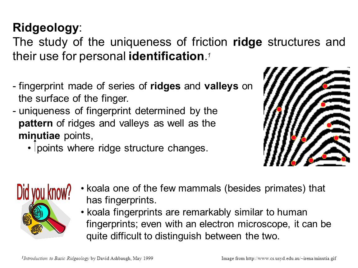 unit 4 fingerprints objectives you will be able to define the