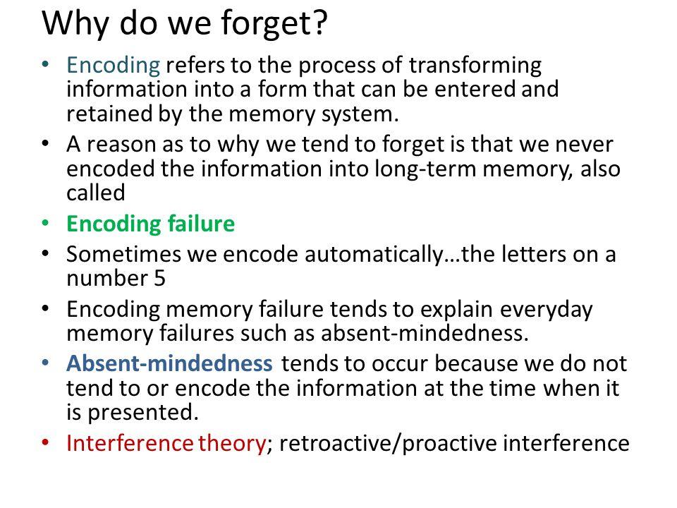 Human Memory Memory Forgetting Imagination inflation Encoding ...