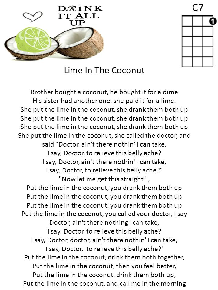 Lyric lime and the coconut lyrics : Beginner Ukulele. RULES FOR USING THE UKULELES Never touch or ...