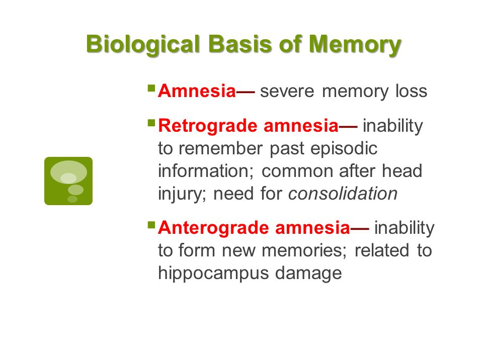 Long Term Memory Chapter 7. Types of Memory Short-Term Memory ...