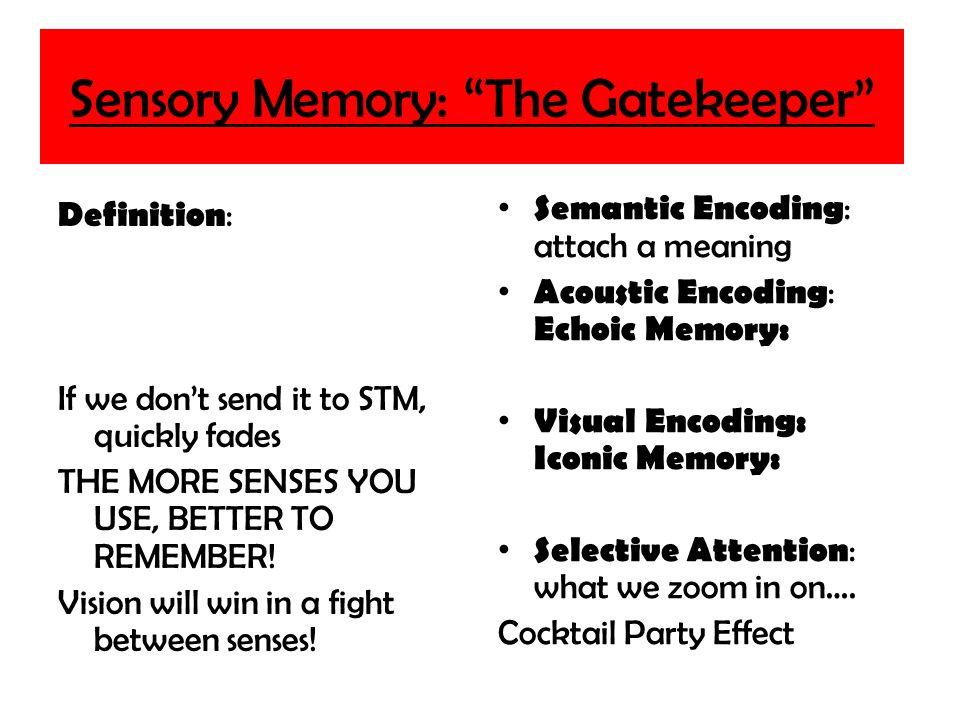 Iconic memory