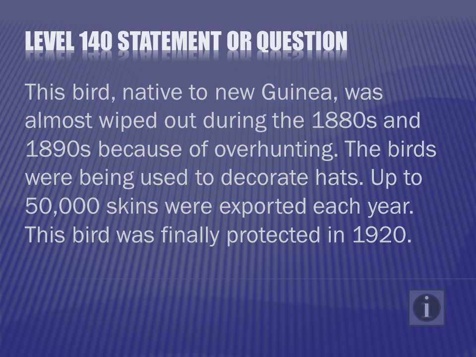 This bird, native to new Guinea, was almost wiped out during the 1880s and 1890s because of overhunting.