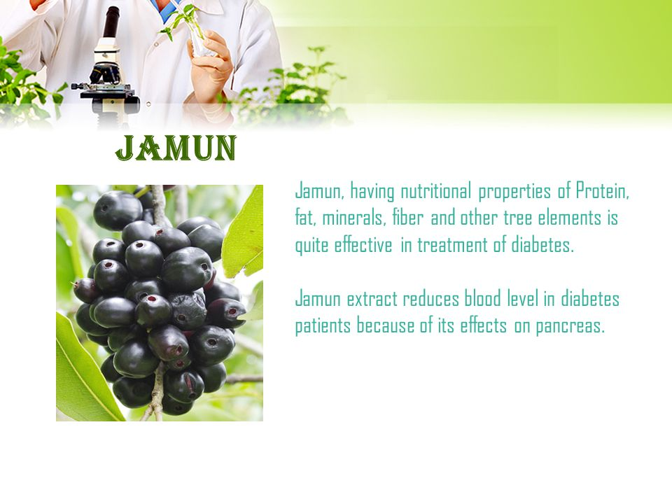 berry used in diabetes