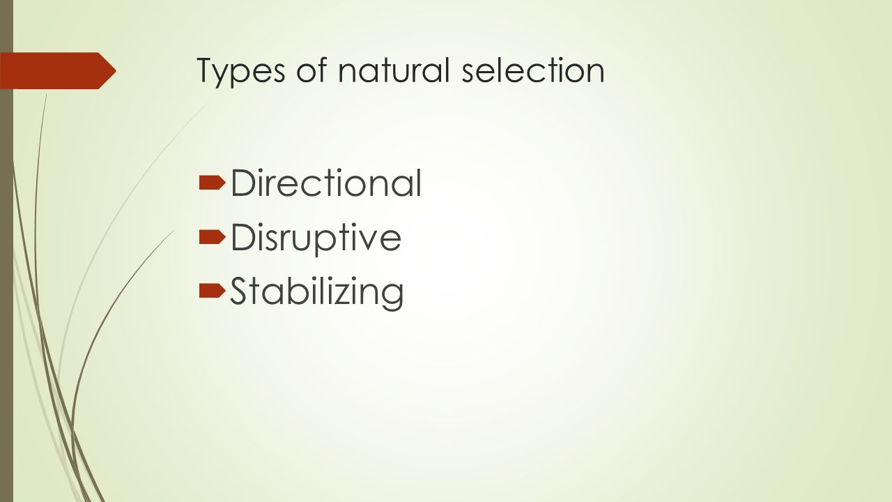 Types of natural selection  Directional  Disruptive  Stabilizing