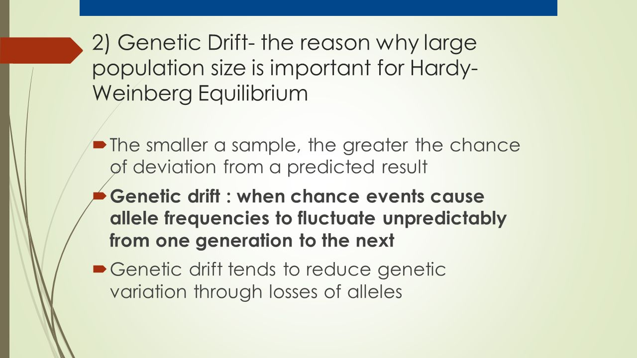 2) Genetic Drift- the reason why large population size is important for Hardy- Weinberg Equilibrium  The smaller a sample, the greater the chance of deviation from a predicted result  Genetic drift : when chance events cause allele frequencies to fluctuate unpredictably from one generation to the next  Genetic drift tends to reduce genetic variation through losses of alleles