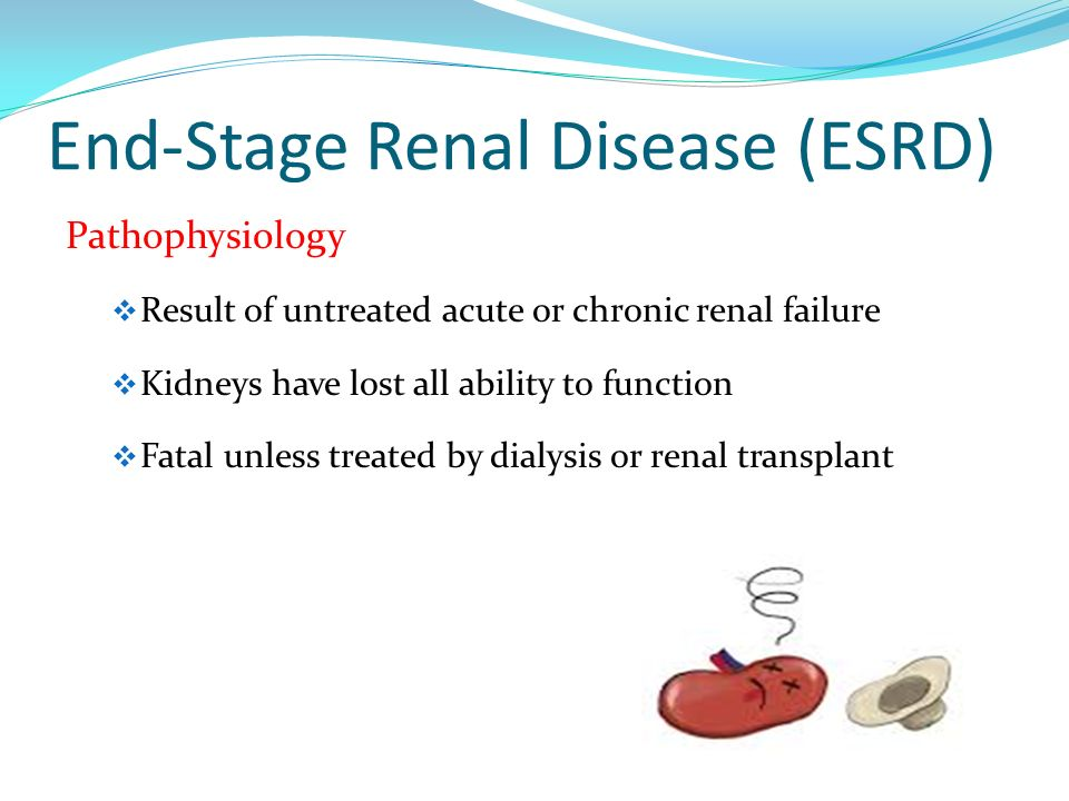 the pathophysiology of acute renal failure essay This free health essay on essay: chronic kidney disease (ckd) is perfect for health students to use as an example.